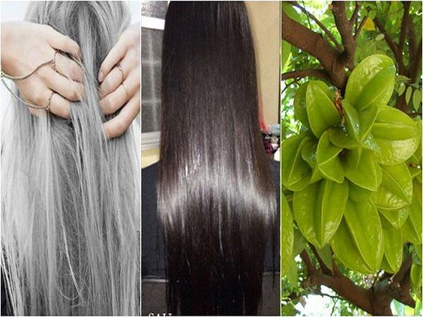 Cách chữa tóc bạc sớm hiệu quả tại nhà