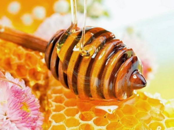 5 cách trị mụn bằng mật ong hiệu quả phái đẹp nên biết