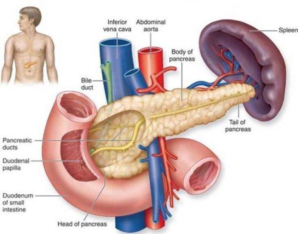 Bệnh ung thư tụy: triệu chứng, nguyên nhân và cách điều trị?
